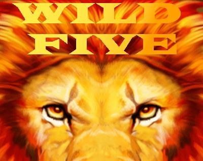 Wild Five Slot