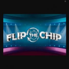 Flip The Chip Slot