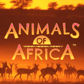 Animals of Africa Slot